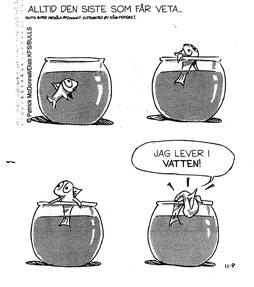 paradigmskifte fisk