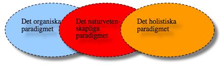 paradigm succession
