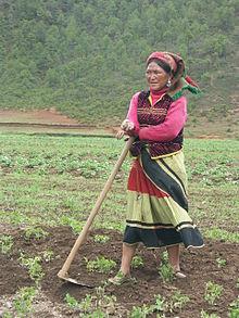 Musuo kvinna. Wikipedia