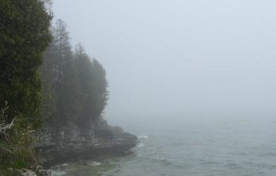 Dimma vatten skog