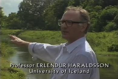 Professor Erlendur Haraldsson