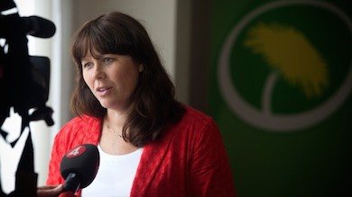 Åsa Romson MP (Press mp)