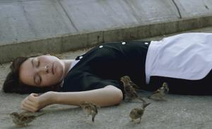 "Filmen ""Bird people"""