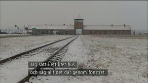 Glöm aldrig Auschwitz!