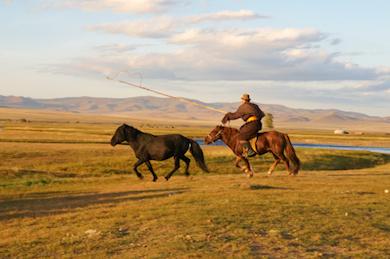 Mongolisk nomad