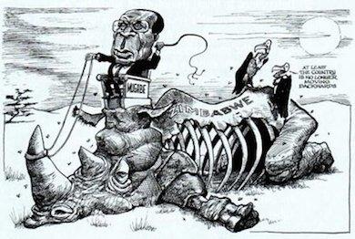 Mugabes diktatur har kört ned Zimbabwe från ett välmående land till sällan skådad depression och förfall.