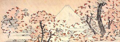 Japanska körsbärsträd vid det heliga berget Fujis fot. Målning: Katsushika Housai (1760-1849)