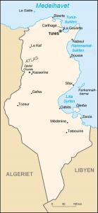 Tunisie_carte-sv