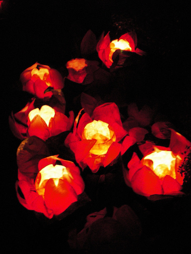 """Chinese floating lotus lanterns"" by Mike (Wiki Commons)"
