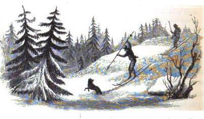 Vargjakt på skidor 1854. Av Alex Fussel, Mason Jackson Wikimedia Commons