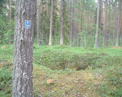 Fångstgrop. Foto: Erik Svanberg (wikicommons)