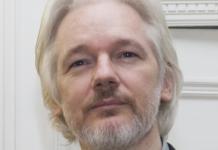 Julian Assange August 2014