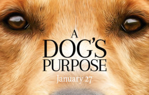"""A dog's purpose"" stoppas på biografer"