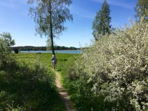 Kersti guidade oss på Sandemars naturreservat