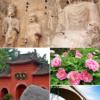 Kvinnorna under Tangdynastin