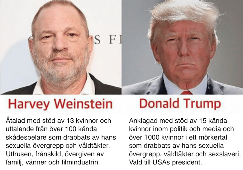 Collage Weinstein Trump