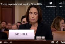 Fiona Hill Youtube foto impeachment