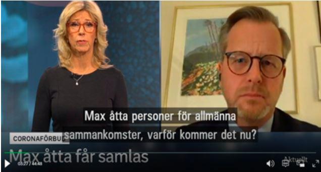 Mikael Damberg i SVT Aktuellt